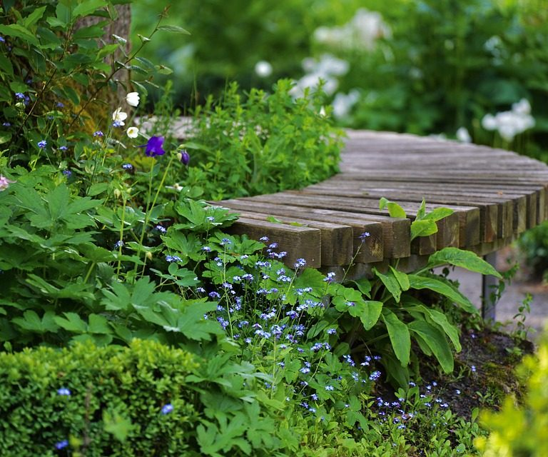 Pflanzen für einen schattigen Garten